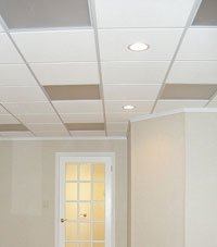 Basement Ceiling Tiles for a project we worked on in Endicott, New York